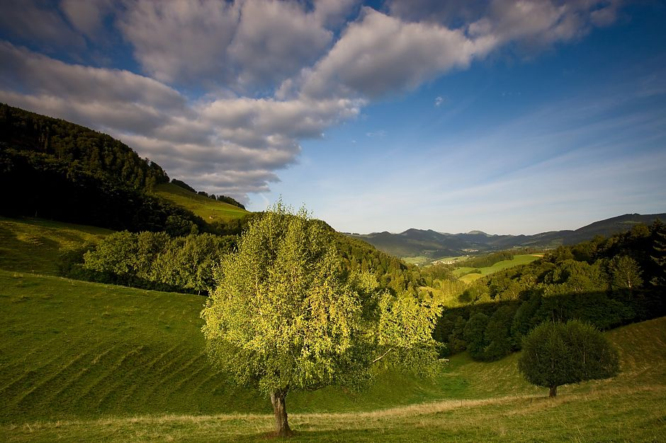 Naturpark Thal - © Switzerland Tourism-BAFU/Roland Gerth